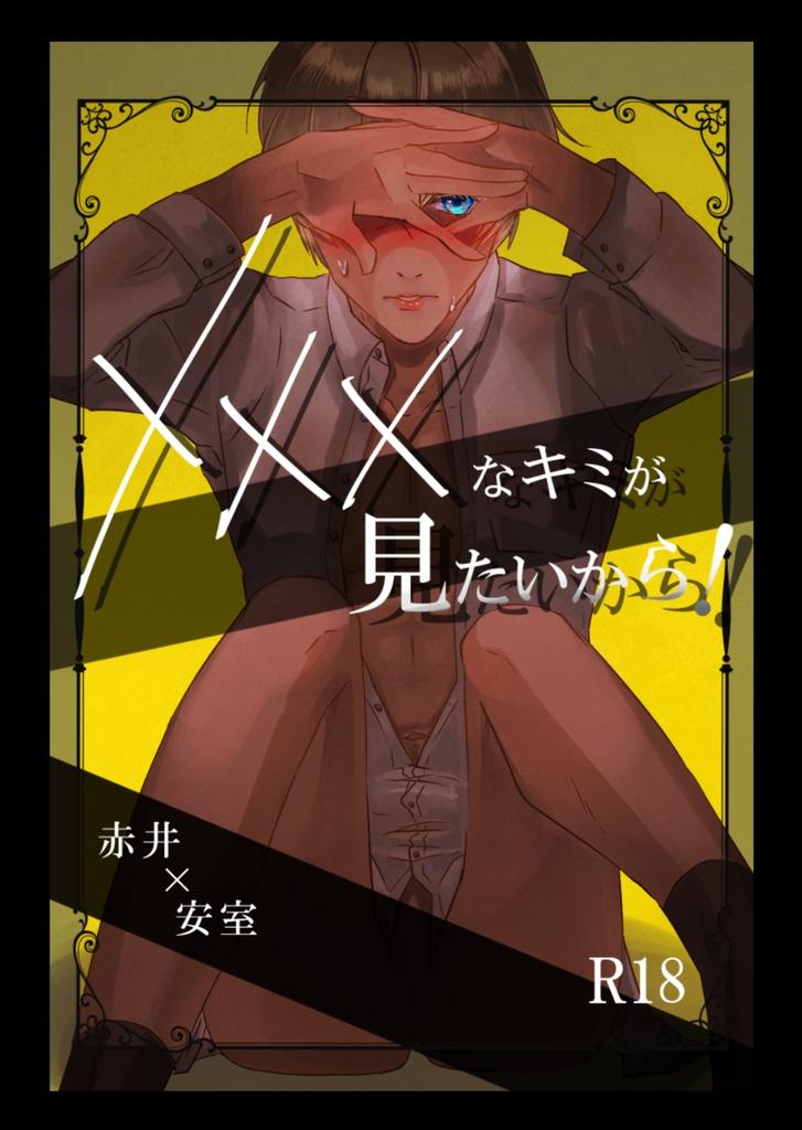 小説 赤 安