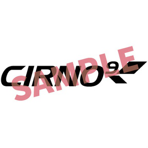 CIRNO 9【東方同人ステッカー】