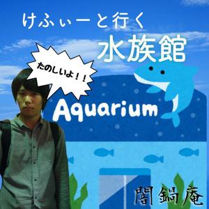 けふぃーと行く水族館デート