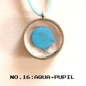AQUA-PUPIL