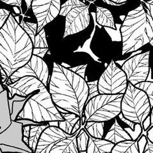 つたブラシ(ComicStudio用)