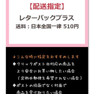 【配送指定】レターパックプラス