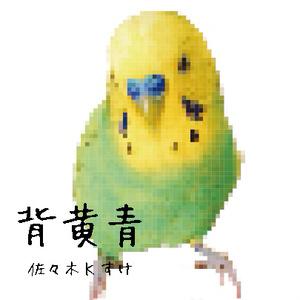背黄青(カラオケ付)