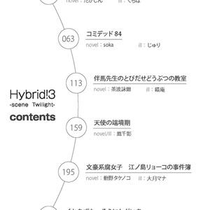 Hybrid!3 scene Twilight