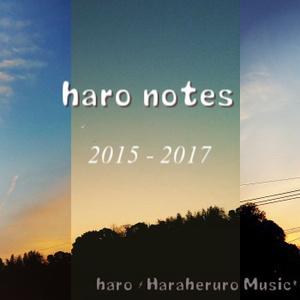 【APPOLO限定】haro notes 2015-2017