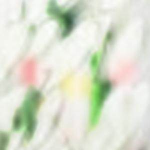Yu Kawa Shizuka 配信版『Le Portrait De(petite) .M』