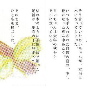 じいちゃんの木(折本)