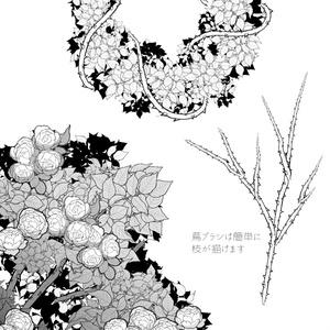 薔薇の葉と蔦 クリスタ用ブラシ