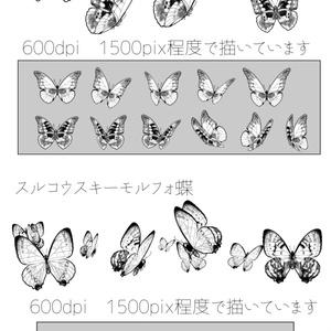 モルフォ蝶ブラシset クリスタ用