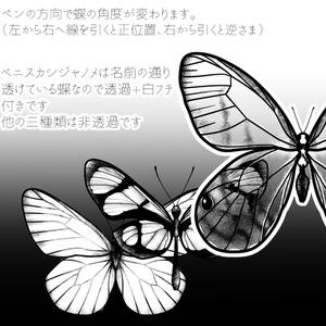 小さい蝶3種set クリスタ用