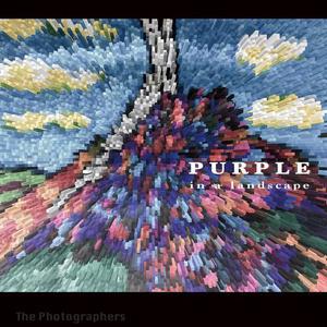 Purple in a Landscape