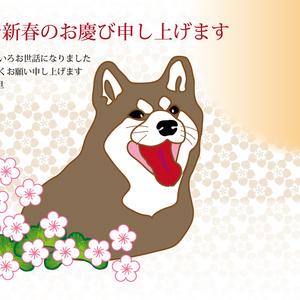 柴犬と梅の花の年賀状テンプレート