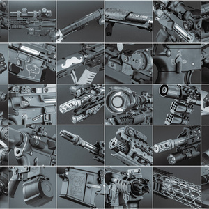 Professional Trainig Weapon Owner's Collection 1