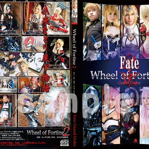 Wheel of Fortine2 (冊子+ロム)