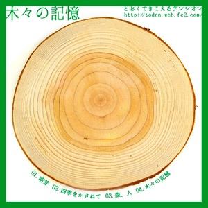 木々の記憶