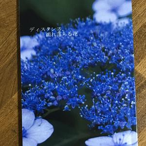 ディスタンス、濡れ落ちる花