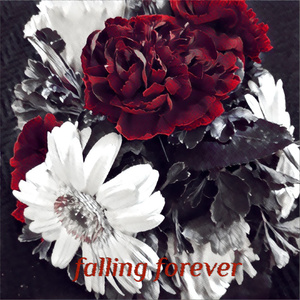 falling forever (feat. タカハシミク)