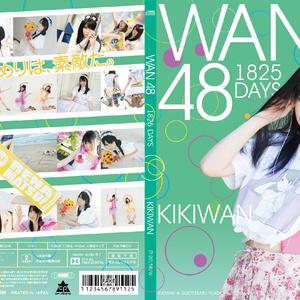 WAN48~1528~