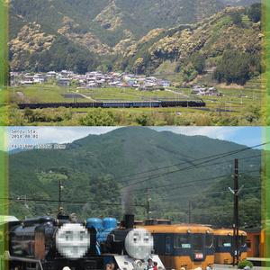 静岡の鉄道 見る旅乗る旅