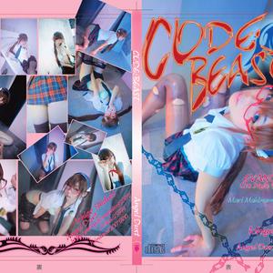 【2012冬】CODE:BEAST