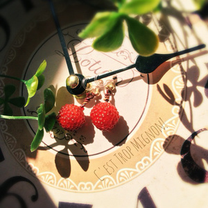 木苺を摘みに