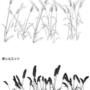 穂草ブラシ02・猫じゃらし・コミスタクリスタ兼用素材