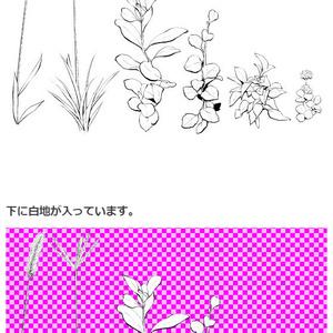 雑草ブラシ02・コミスタクリスタ兼用素材