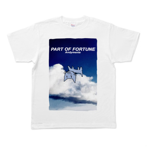 AM-PartOfFortuneTシャツ Mサイズ