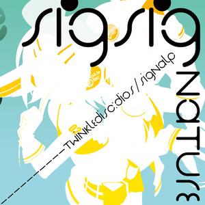 SigSignature