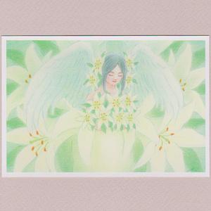 花の天使~ユリ(白)~