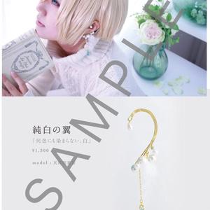 (あ)コス×アクセ写真集 lueur des étoiles