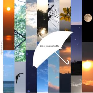 this is your umbrella ジャケット・歌詞カード画像