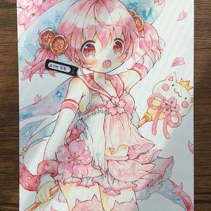 複製原画B5 桜猫魔女ちゃん