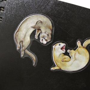 フェレットの生活シール / Ferret Sticker
