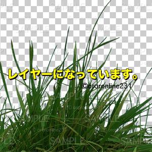 草の素材_No,02