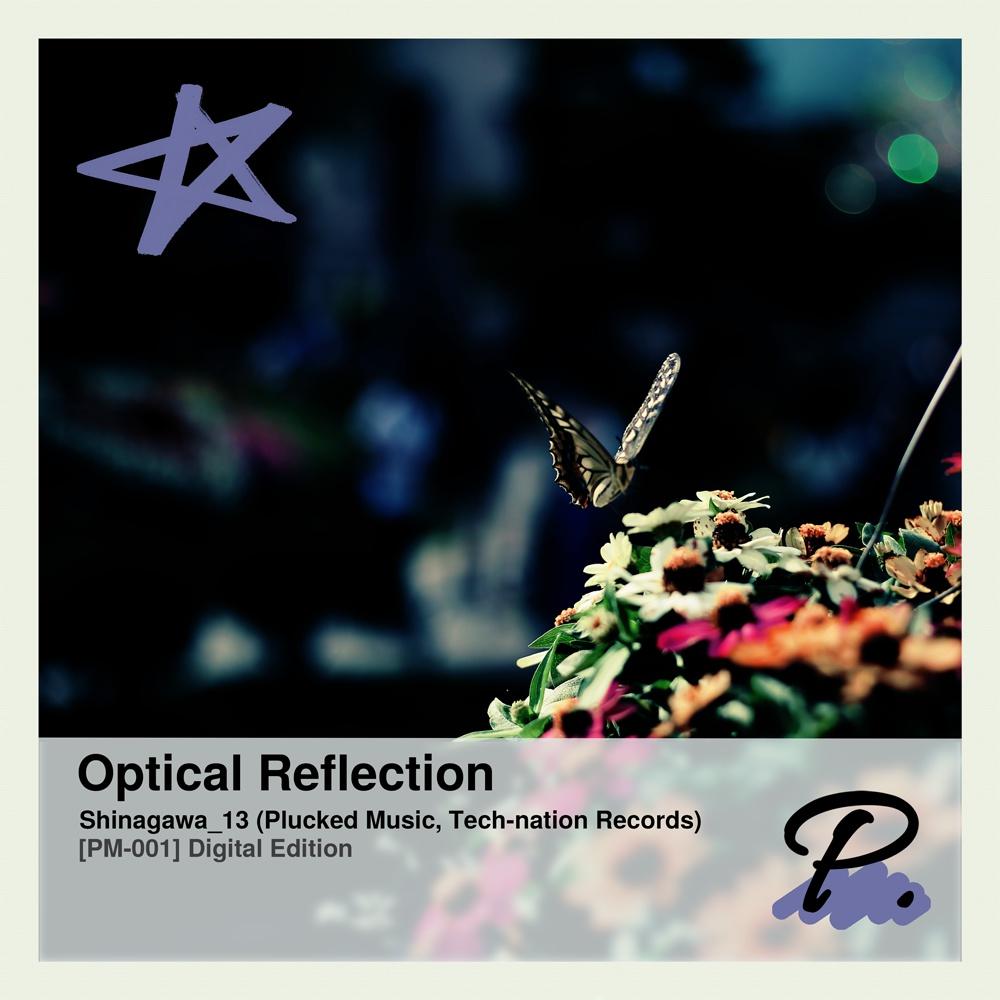 [PM-001] Optical Reflection